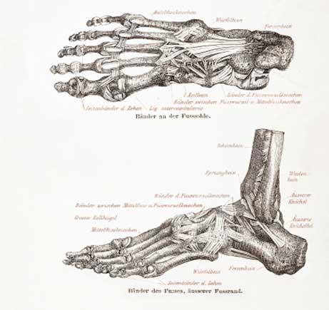 Privat ortoped skövde
